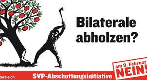 """Konec liberálního úspěchu a limity přímé demokracie? Příčiny a důsledky švýcarské iniciativy """"Proti masovému přistěhovalectví"""""""